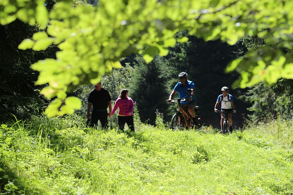 šumavou na kolech