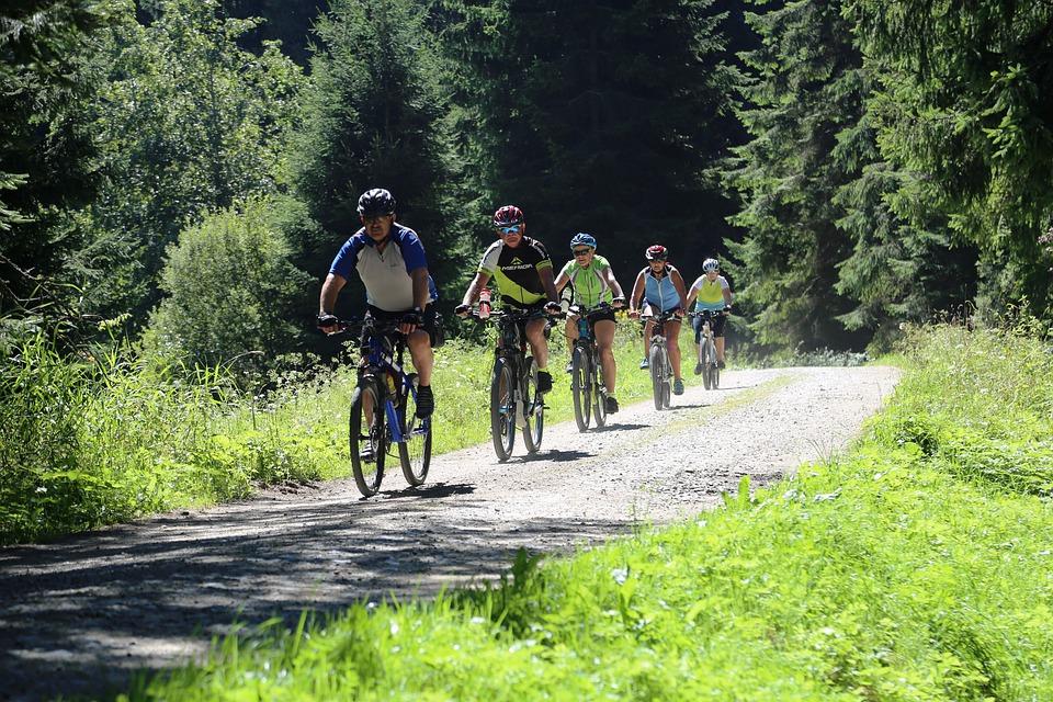 cyklisté na Šumavě