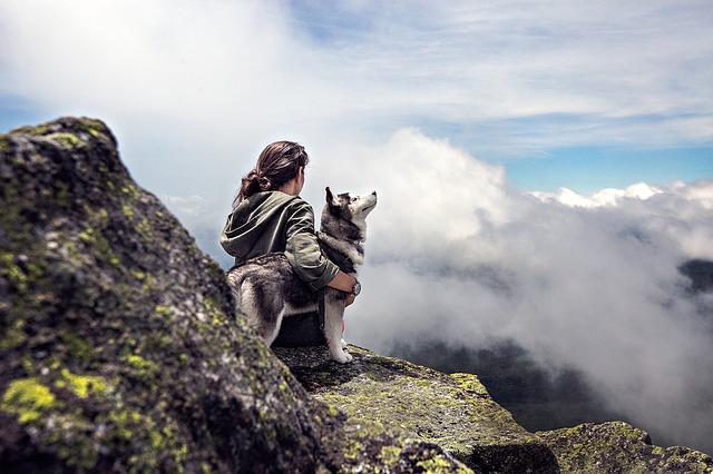 dívka a husky